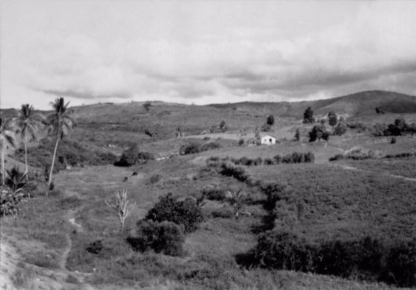 Sítio em Vitória de Santo Antão (PE) - 1956