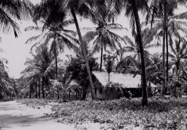 Casa no Cabo de Santo Agostinho (PE) - 1955
