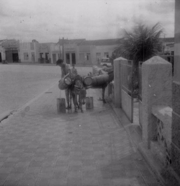 Jumentos de água no Bairro Encruzilhada na cidade de Salgueiro (PE) - 1962
