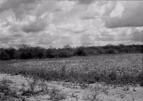 Depressão em Jacobina do Piauí (PI) - 1957