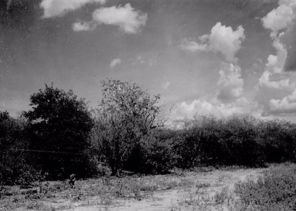 Vegetação na margem da depressão em Jacobina do Piauí (PI) - 1957