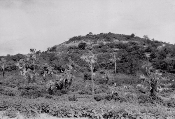 Relevo próximo a Fazenda Salto de Pedras em Conceição do Canindé (PI) - 1957