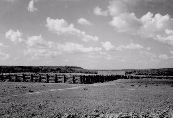 Curral em Cocal de Telha (PI) - 1957