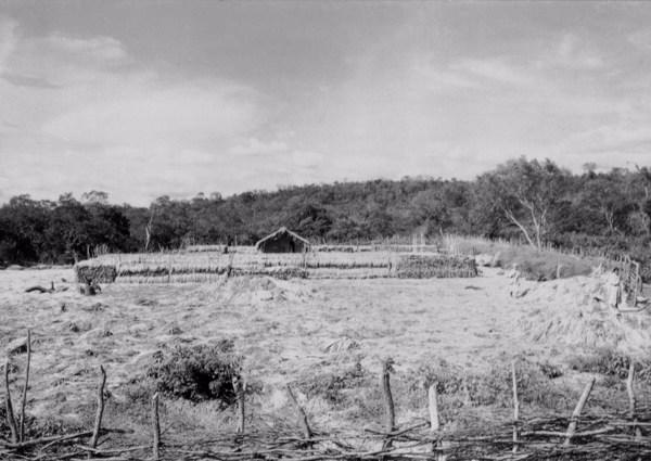 Cercado em Colônia do Piauí (PI) - 1957