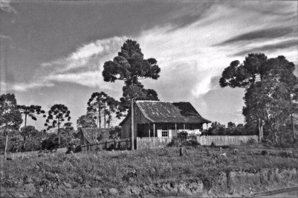 Casa de pequeno proprietário : Rio Negro (PR) - 1954
