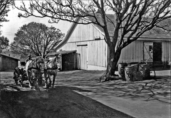 Carambeí : aspectos, casa e carroça (PR) - 1955
