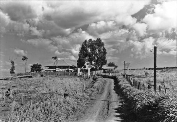 Sede da fazenda Sete Quédas no município de Mandaguaçu (PR) - 1955