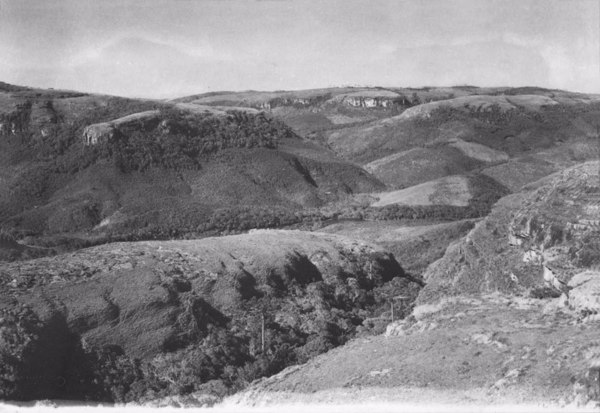 Vista da escarpa do grande paredão do Rio Iapó (PR) - 1955