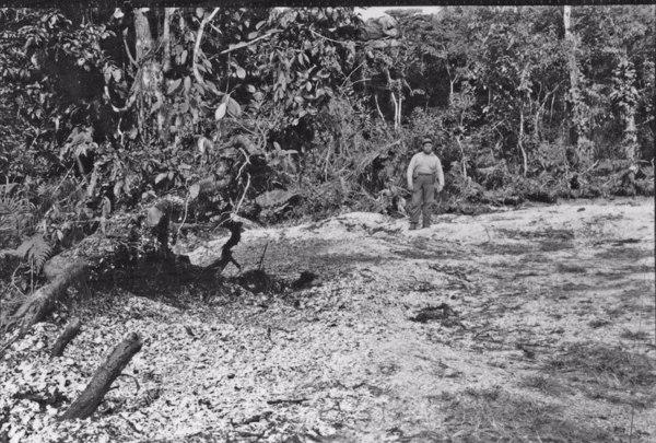 Sambaqui em exploração (PR) - 1955