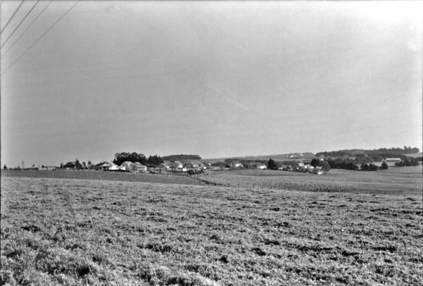 Vista total do município de Carambeí (PR) - 1955