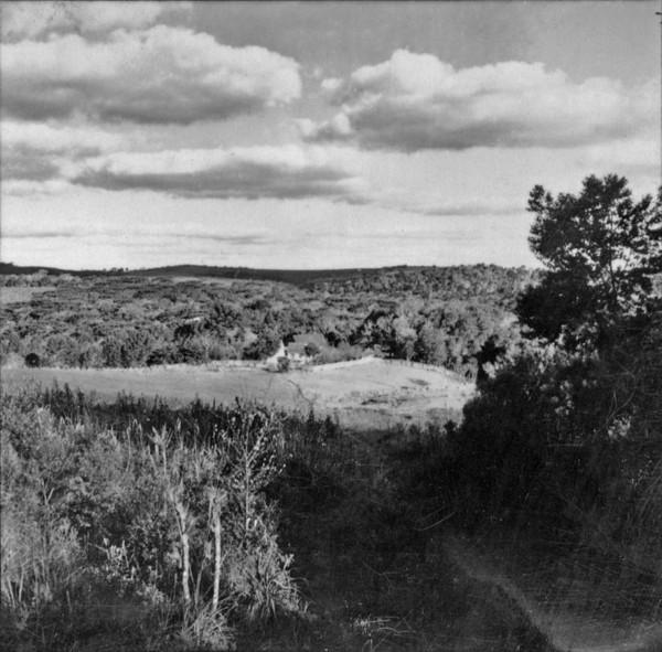 Colonia Papagaios Novos : Cidade de Palmeira (PR) - 1957