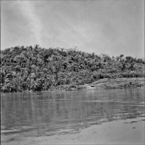 Vegetação marginal do Rio Iguaçú : Município de Chopinzinho (PR) - 1957