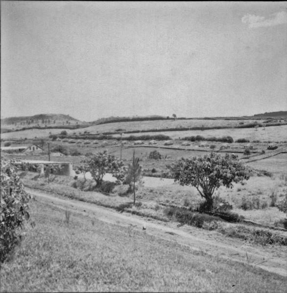 Casas dos colonos da fazenda Santa Maria (PR) - 1960