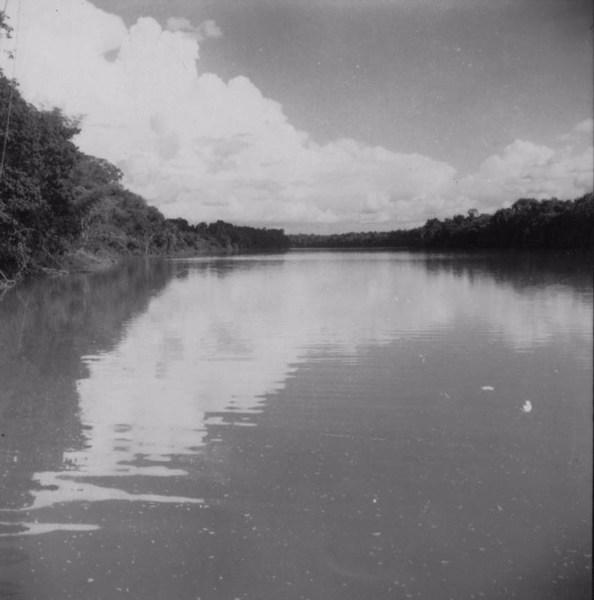 Vista do rio Ivaí largura de 210 metros : município de São Carlos do Ivaí (PR) - 1960