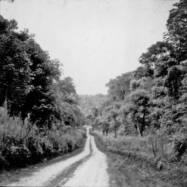 Reserva de mata : Parque Nacional em Foz do Iguaçu (PR) - 1966