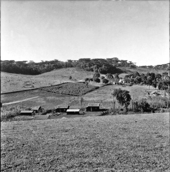 Casa de material : Município de Mariópolis (PR) - 1965