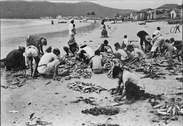 Limpeza de peixes : Cabo Frio (RJ) - 195_