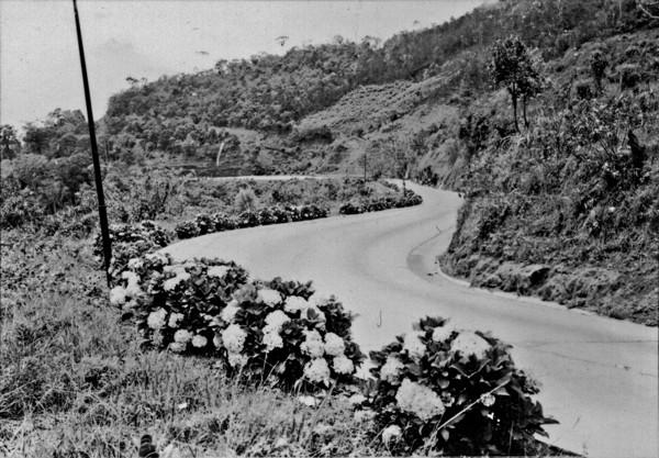 Aspecto da estrada de Teresópolis : Petrópolis (RJ) - 195_