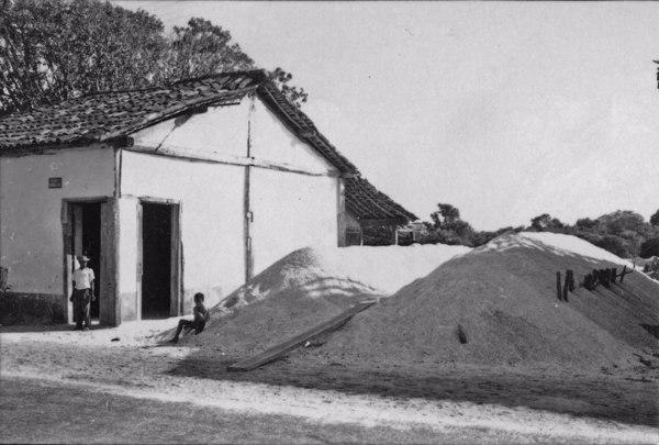 Fábrica de moagem de ostras : São Pedro da Aldeia (RJ) - 1958