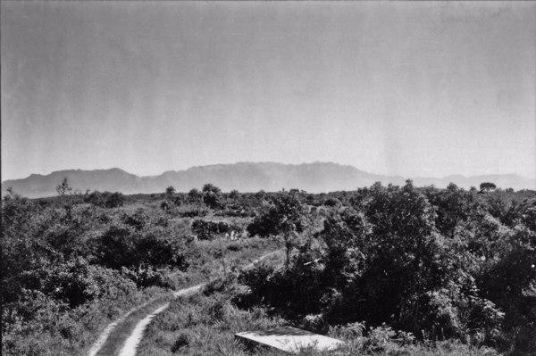 Escarpamento da frente da Serra do Mar, vista da estrada que liga Alcântara a parte mais alta : Município de São Gonçalo (RJ) - 1958