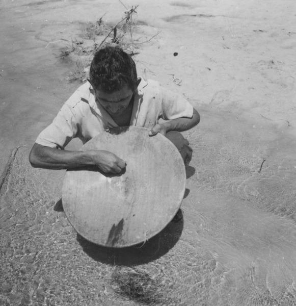 Bateia com pó de ferro e ouro no Igarapé Uiramutã (RR) - 1978