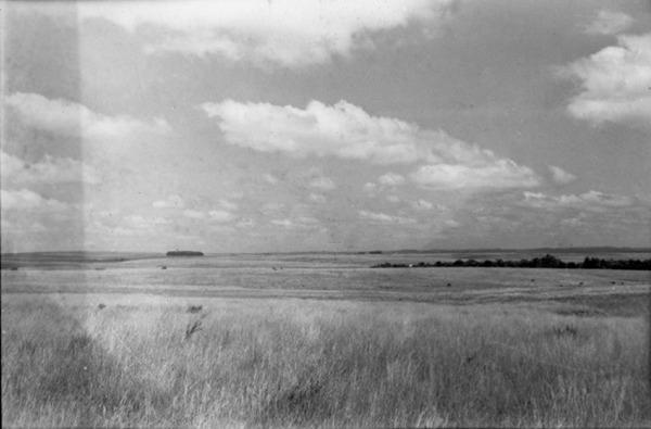 Coxilhas suaves : estrada Santa Maria (RS) - 1954
