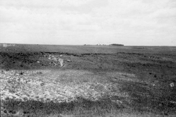 Erosão causada pelo gado na estrada Santa Maria (RS) - 1954