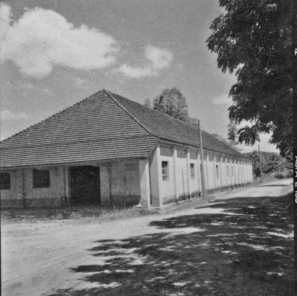 Galpão da Cooperativa Frutícola Pareci Novo : beneficiamento da laranja (RS) - 1959