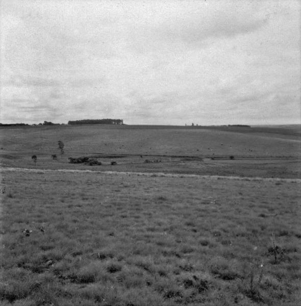 Campo perto de Cruz Alta : alt. 370ms : panorâmica (RS) - 1959