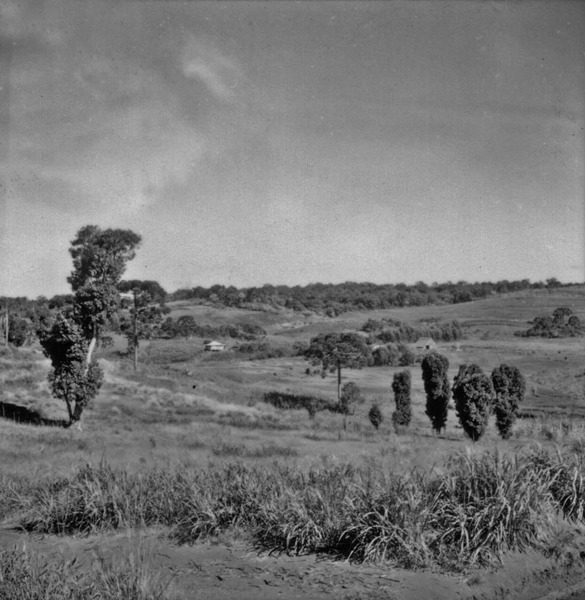 Panorâmica : relevo : Erechim (RS) - 1959