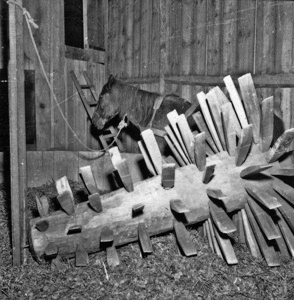 Moenda de erva-mate : município de Joaçaba (SC) - 1957