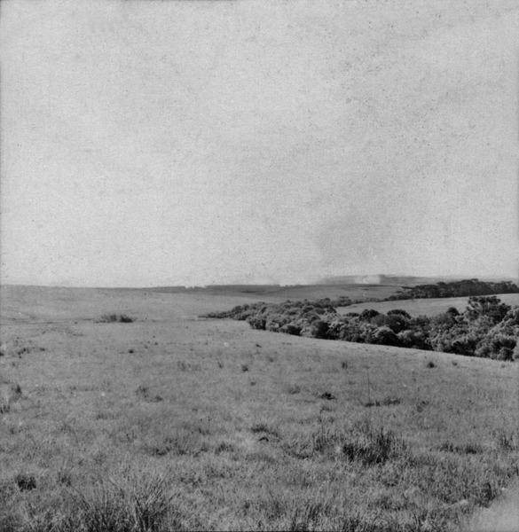 [Pasto com queimada na Fazenda São Roque, próximo a Lages, vindo de Mafra (SC)] - 1959