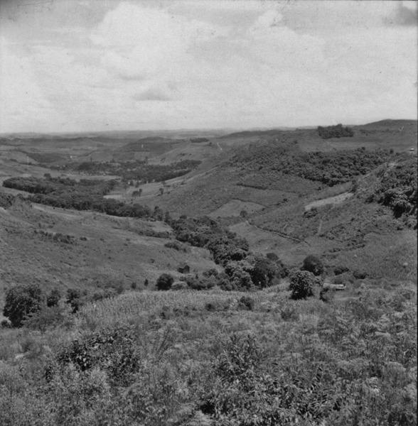 [Plantação em vale situado 10 milhas após Joaçaba, na direção de Campos Novos (SC)] - 1959