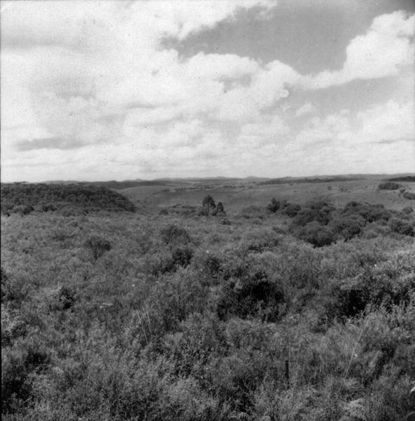 [Fotografia panorâmica de relevo, situado após o município de Campos Novos (SC)] - 1959