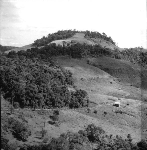 Cultura de milho entre patamares no município de Xanxerê (SC) - 1966