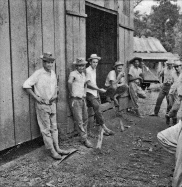 Grupo de lenhadores : frente pioneira Irajá (SC) - 1965