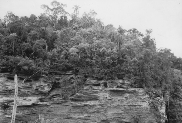 Camada de xisto perto de Santana (SC) - 1953