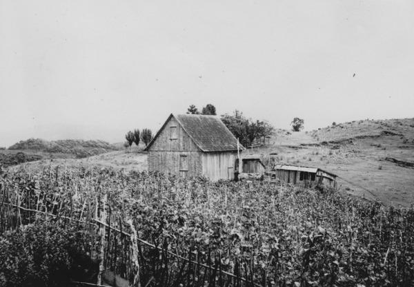 Casa de madeira em Rancho Queimado (SC) - 1955
