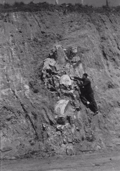Esmagamento de camadas, perto de São Roque (SP) - 1955
