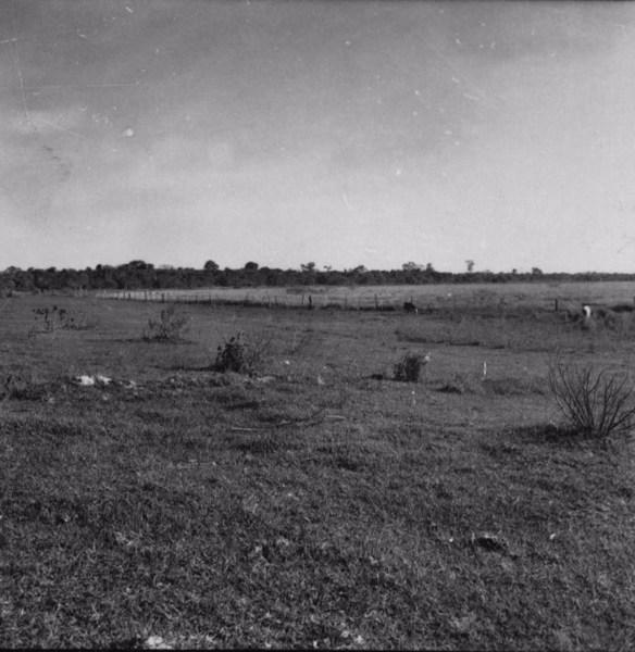 Depressão fechada perto de Avanhandava (SP) - 1957