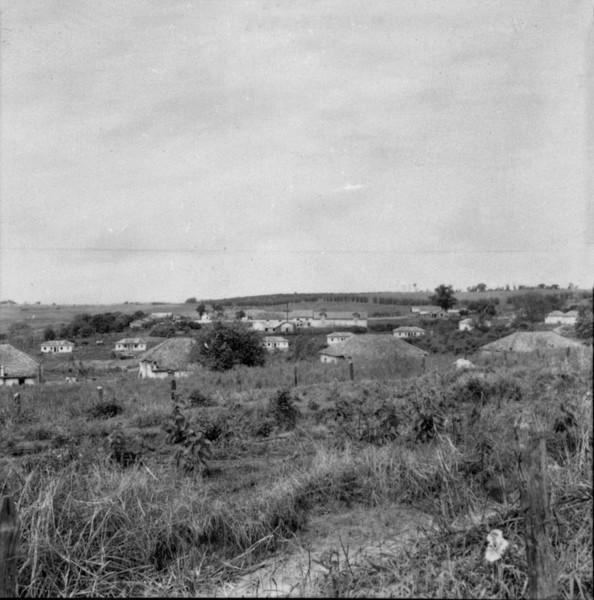 Fazenda de café em Presidente Venceslau (SP) - 1957