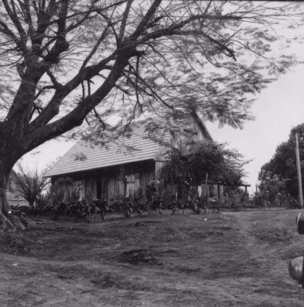 Tipo de habitação : Fazenda Palmas no município de Tupã (SP) - 1957