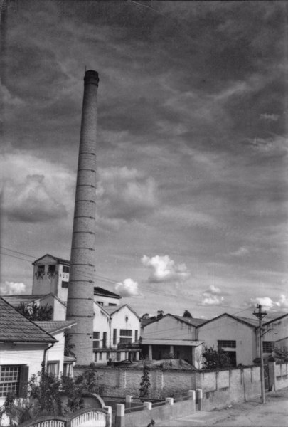 Aspecto da Rodovia Presidente Dutra, vendo-se ao fundo o reflorestamento do eucaliptal : Município de Lorena (SP) - 1958