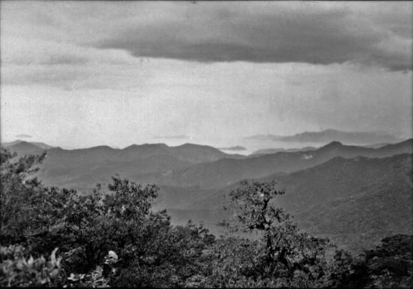 Aspecto do relevo da Baía de Ubatuba, vendo-se a vegetação da floresta densa : Município de Ubatuba (SP) - 1958