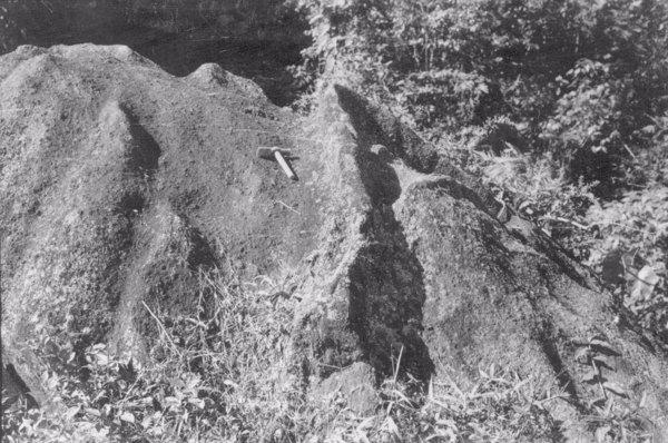 Município de Registro : efeitos da erosão diferencial num bloco de granito (SP) - 1958