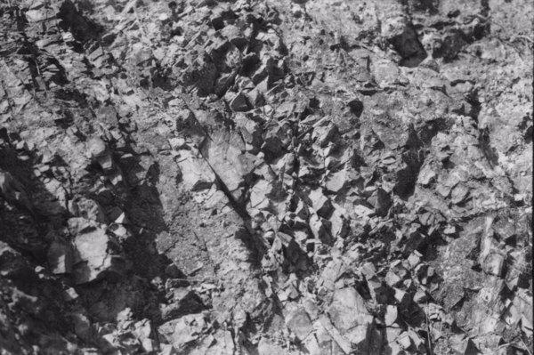 Rede de diaclase cortando o afloramento rochoso : Município de Águas da Prata (SP) - 1958
