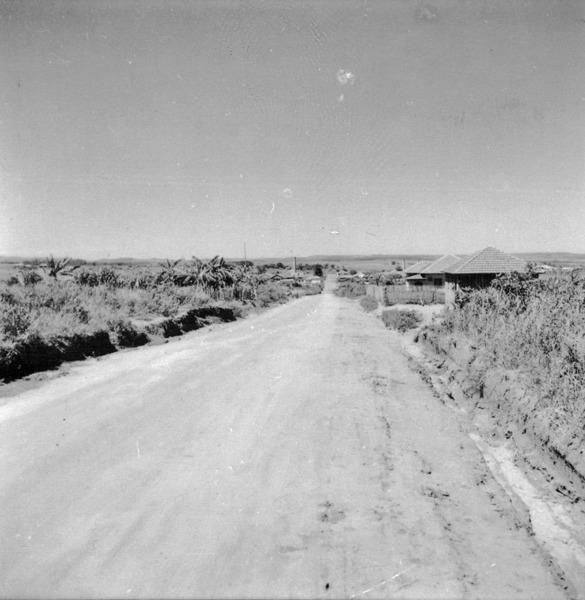 Vista do planalto do Paraná. No primeiro plano, a baixada do Rio Paranapanema : Município de Ourinhos (SP) - 1960