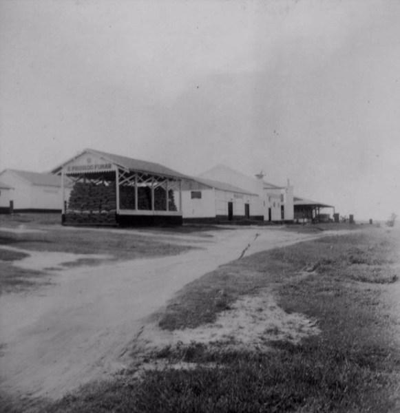 Fábrica Anderson Clayton Ltda : beneficiamento de algodão e amendoim : Município de Presidente Venceslau (SP) - 1960