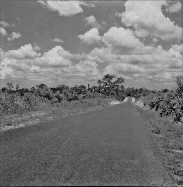 Reserva de mata mexida : Município de Gália (SP) - 1960