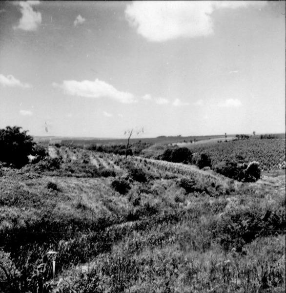 Relevo, ao fundo vale : Município de Vera Cruz (SP) - 1960